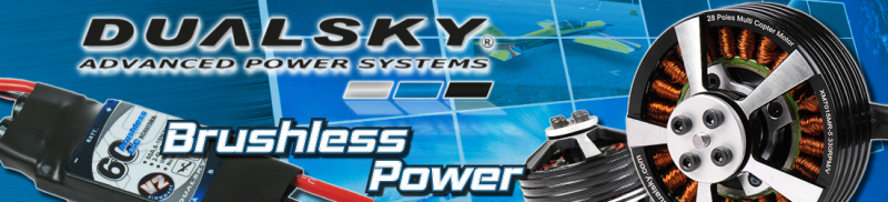 Dualsky Brushless Power